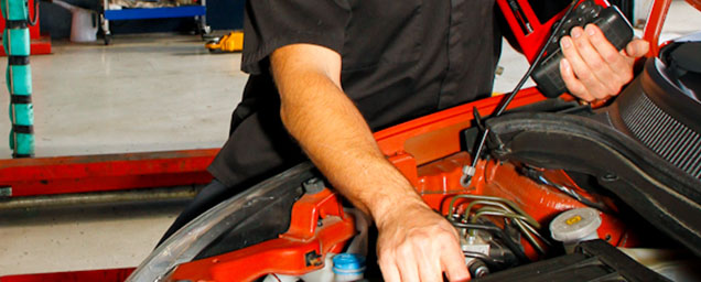 fredco-motors-engine-management-and-diagnostics